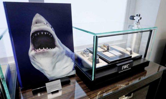 """IWC Aquatimer Cronógrafo Edición """"Sharks"""""""
