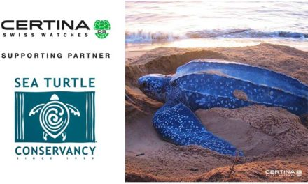 Certina con las tortugas marinas